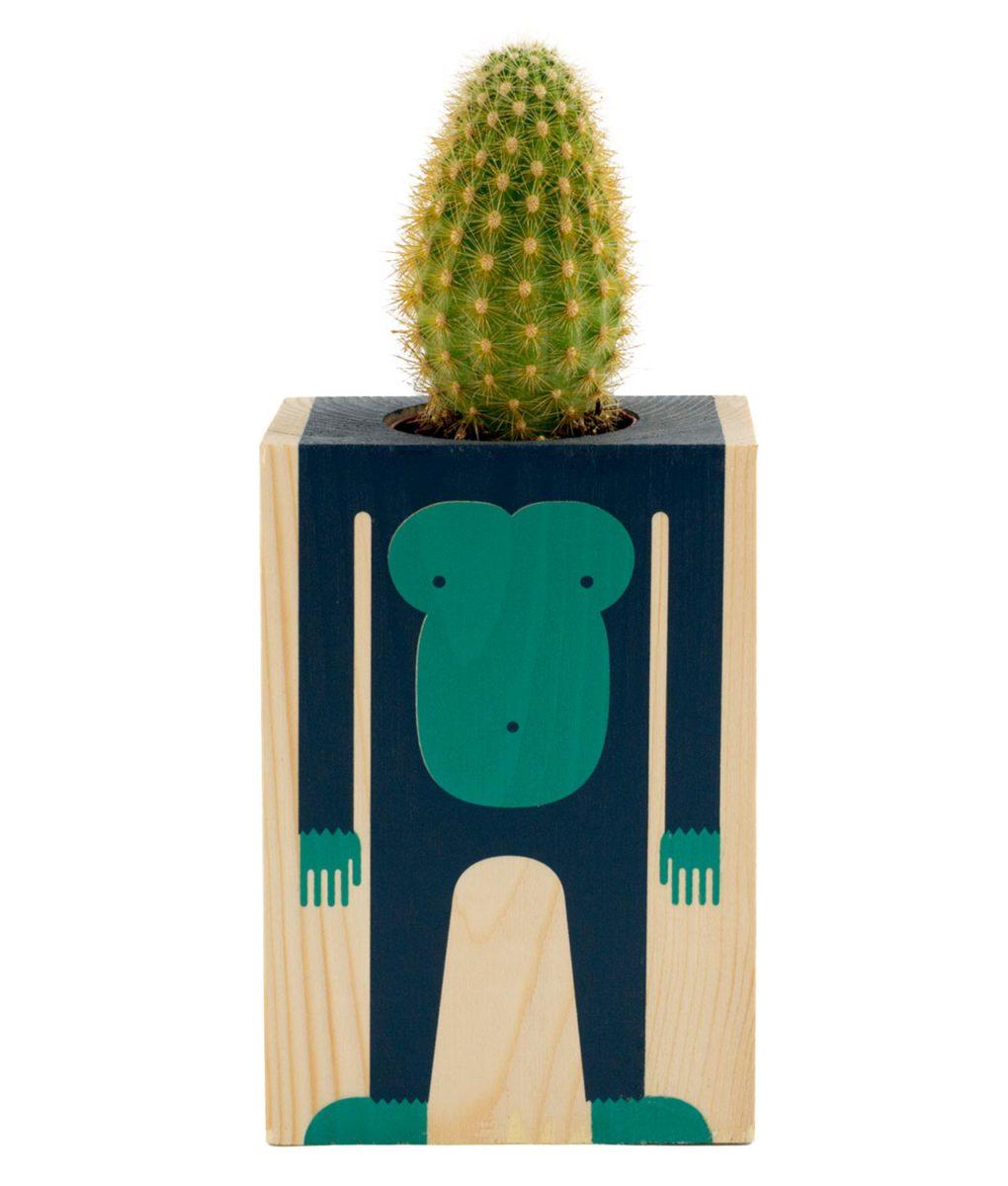Cactus Mono