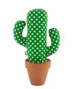 Cactus Flamenco