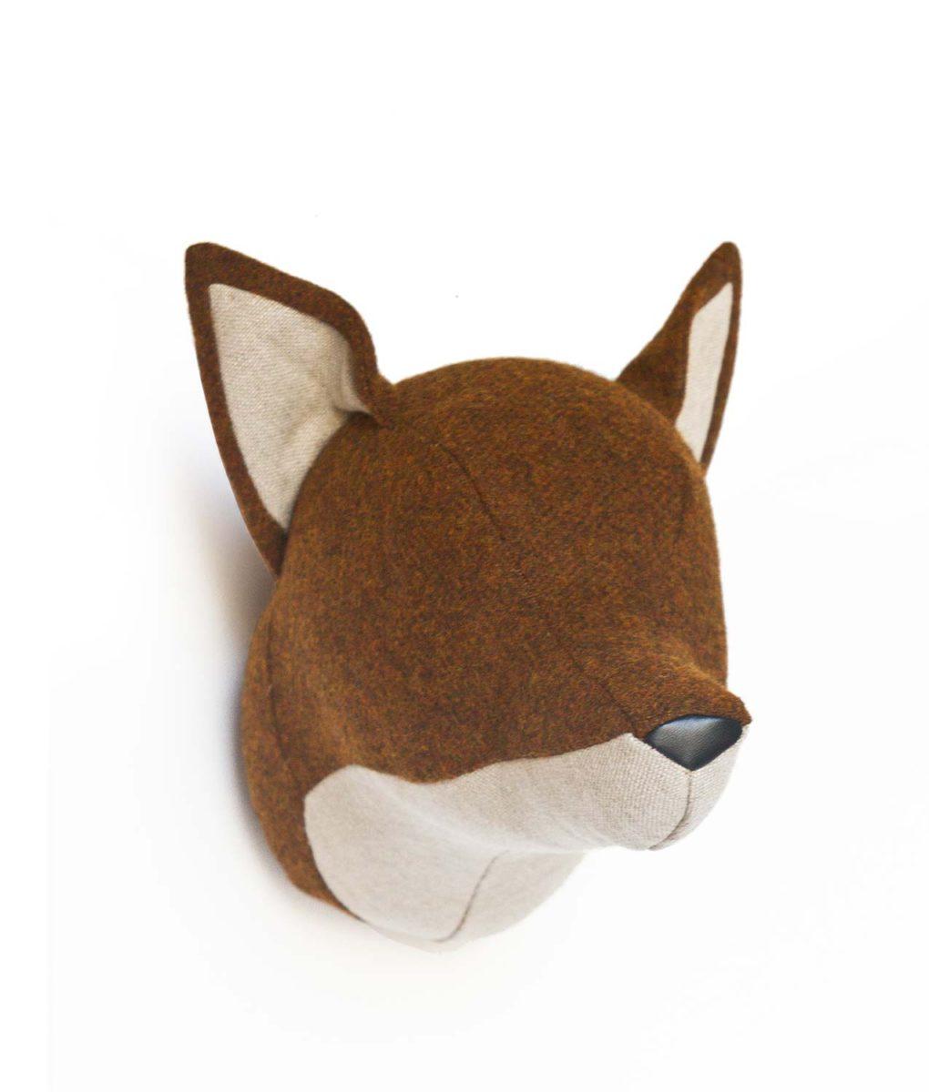 fox-frontal-softheads