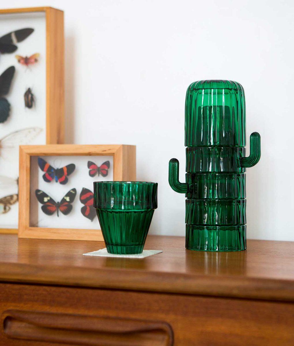 vasos cactus